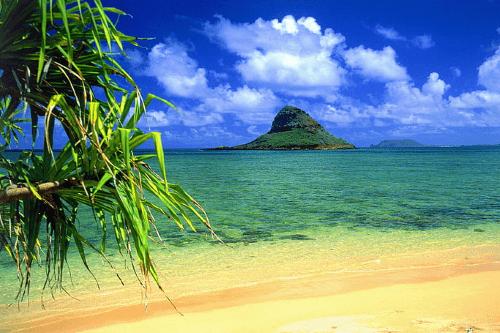 hawaii 001.png