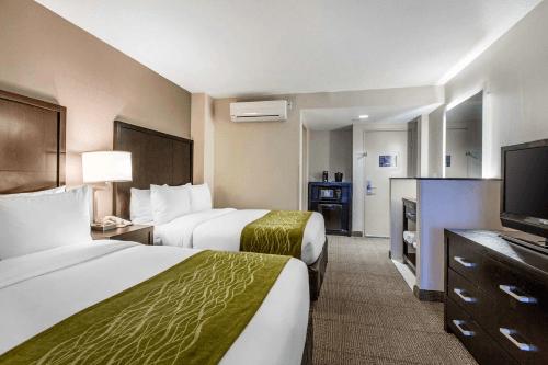 comfort inn suites san diego zoo seaworld area kamer.png
