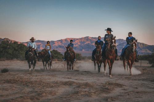 cowboy trail in de avond.png