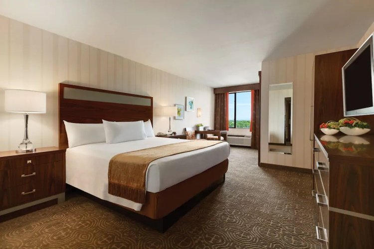 gold coast hotel 1 bed.jpg