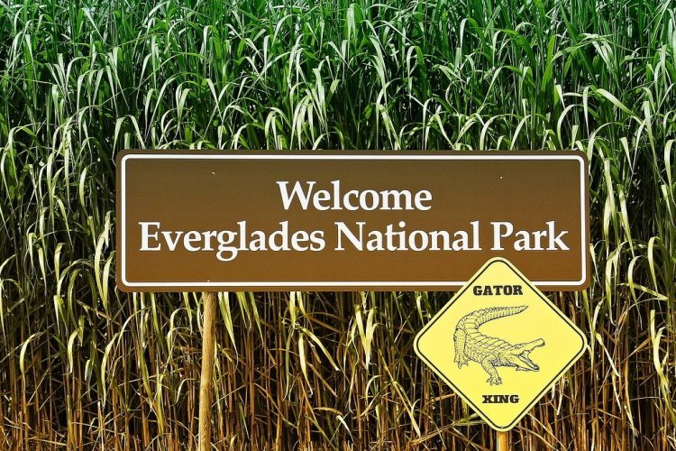 everglades sign-4414120_1280.jpg