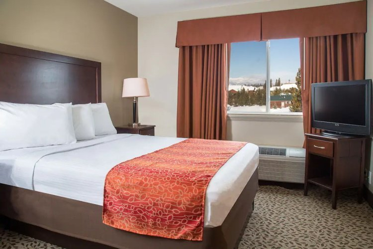gray wolf inn & suites kamer 1 bed.jpg