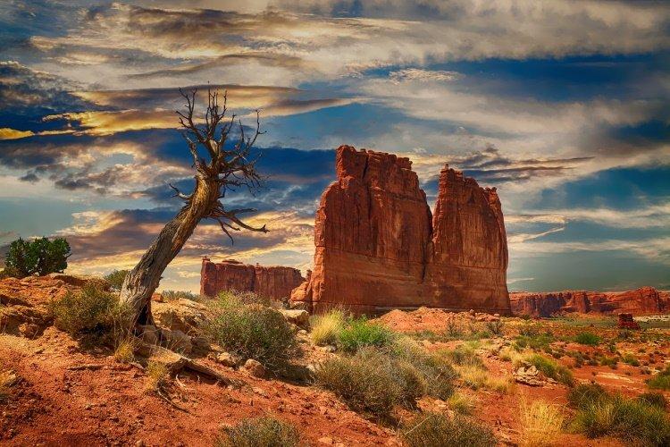 bryce canyon bryce-canyon-2611781_1280.jpg