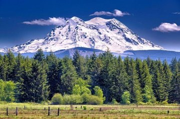 Mount Ranier National Park