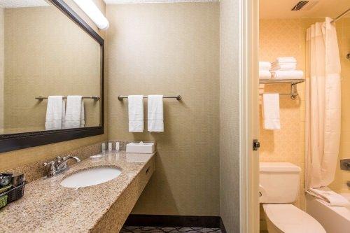 Clarion Hotel Anaheim Resort badkamer