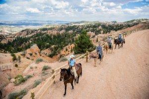 Paardrijden Bryce Canyon