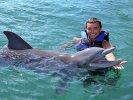zwemmen met dolfijnen key largo