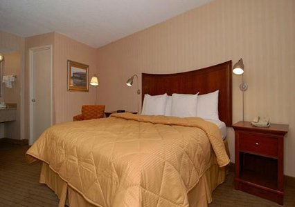 Comfort Inn Downtown Memphis 03.[1]
