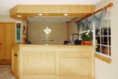 Comfort Inn Santa Monica 006