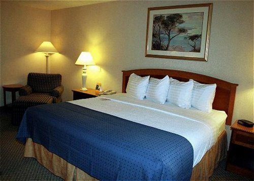 Holiday Inn Buffalo Bill Village  04.[1]
